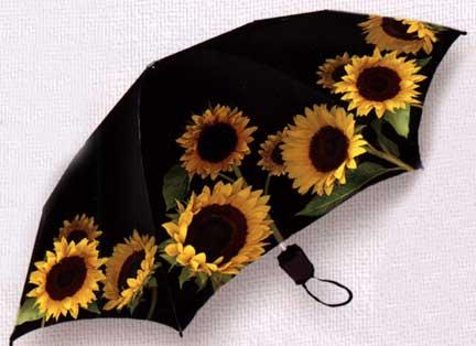 sunflowersumbrella633.jpg
